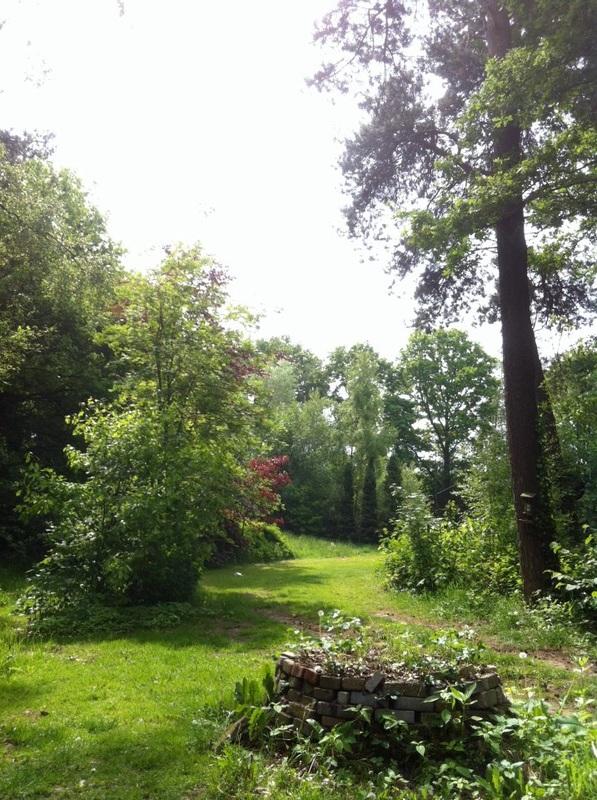 Deel van de tuin